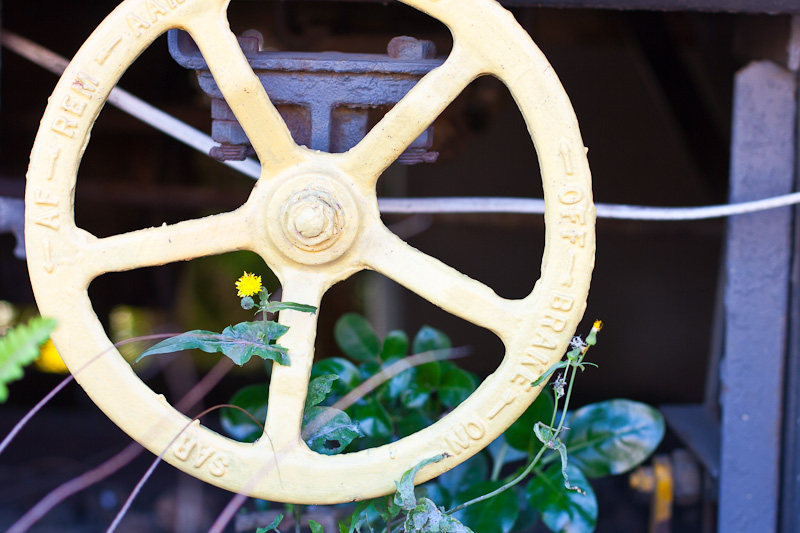 hand brake on train carriage with flower, western Cape photographer