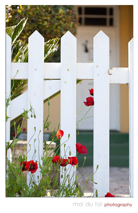 White picket fence & flowers, doorway