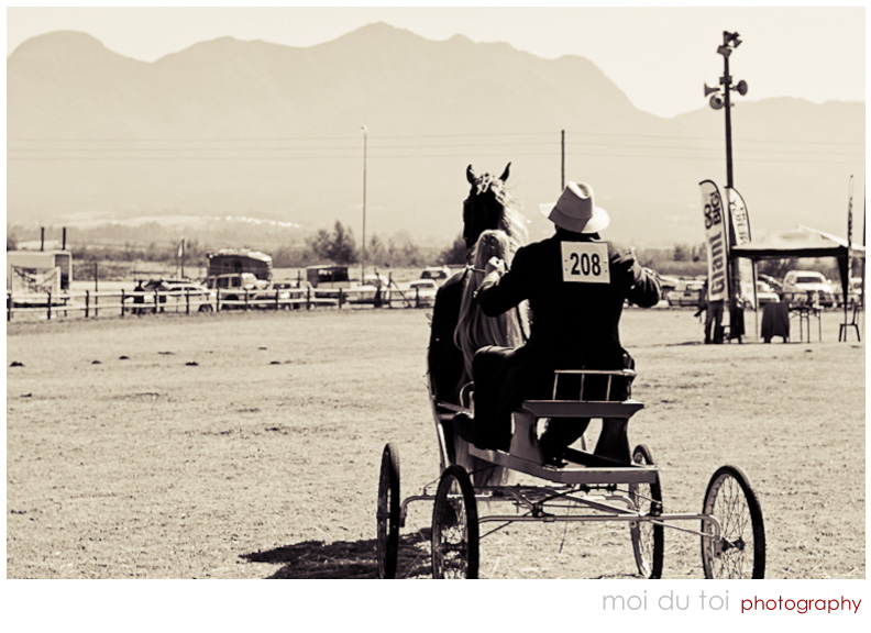Horse & Buggy competition B & W
