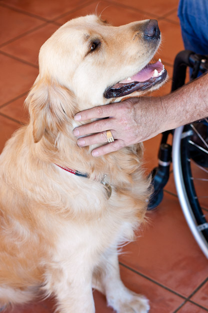 service dog photography south africa