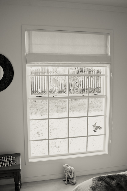 Faux sash windows, with cottage pane burglar proofing