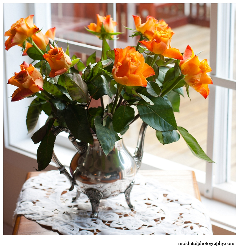 natural light orange roses