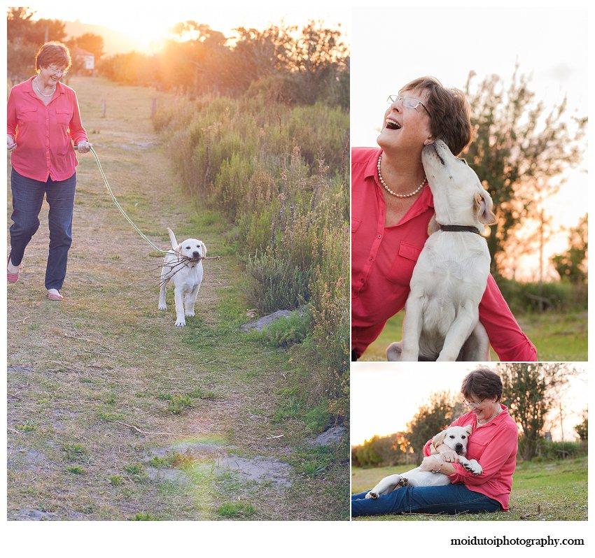 Puppy collage sunset