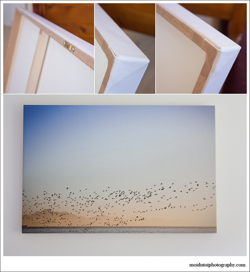 moi du toi photography canvas wall art, quality product, prints, museum quality