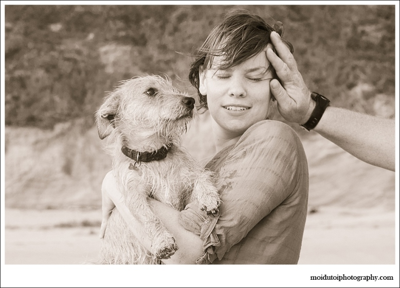 Dogs, beach, western Cape, pet photography, wind in my hair