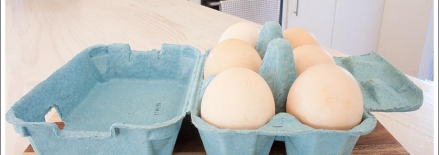 Free range eggs, happy hen, natural light