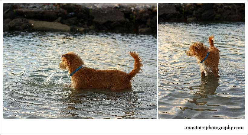 Odies first swim