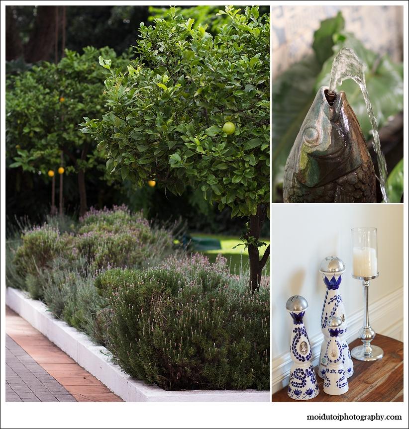 garden, lifestyle photography