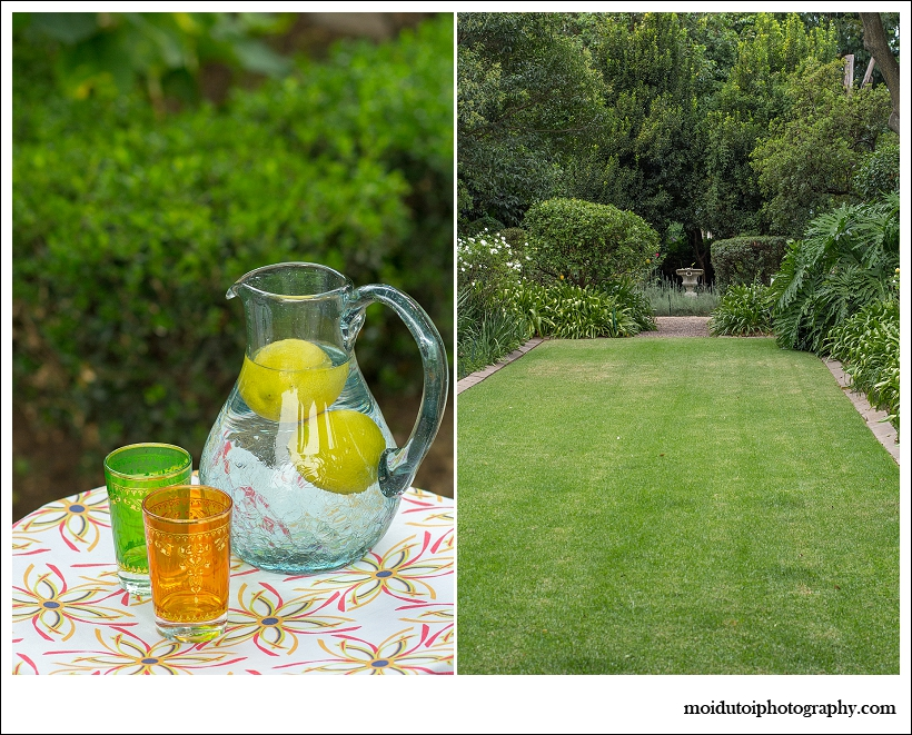 Beautiful garden, lemons, glasses colourful