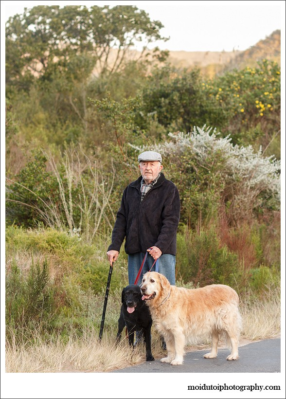 pet photography, pet photographer western cape, moi du toi photography, dog photos, golden retriever, sedgefield, online photography class