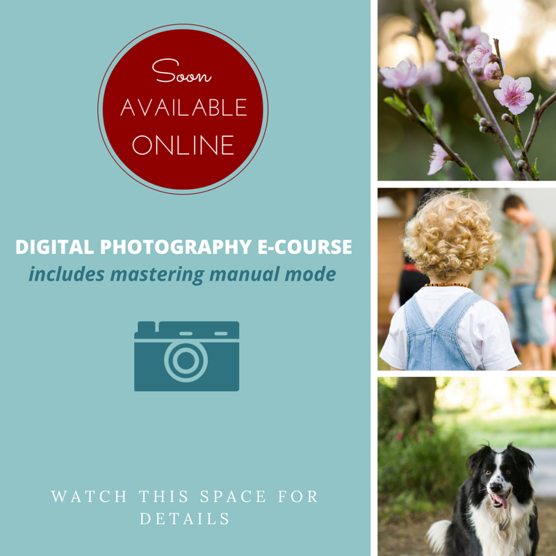 Online photography course, easy basic digital photography class, learn how to use your camera, learn to shoot in manual mode