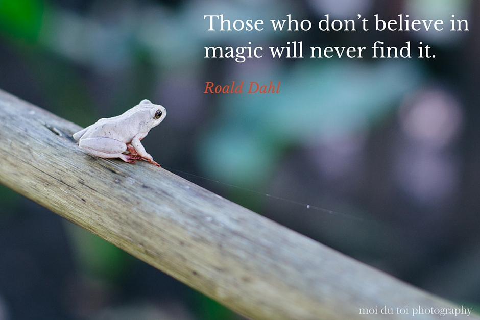 Those who don't believe in magic will never find it!