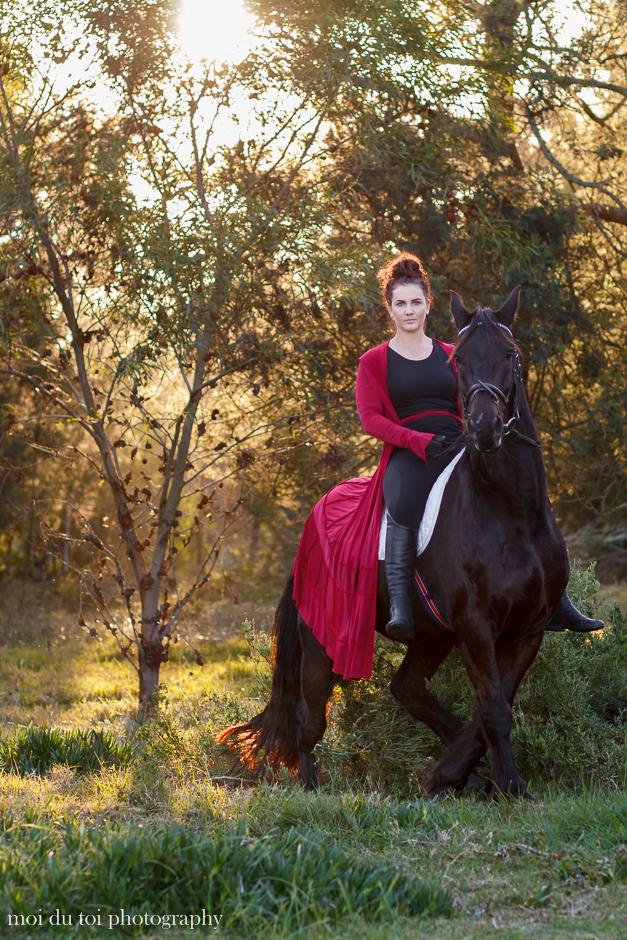 horse photography, moi du toi photography, South African animal photographer