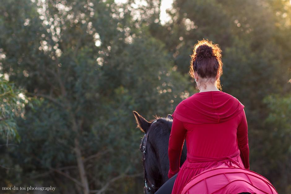 horse photography, moi du toi photography, animal photographer western Cape