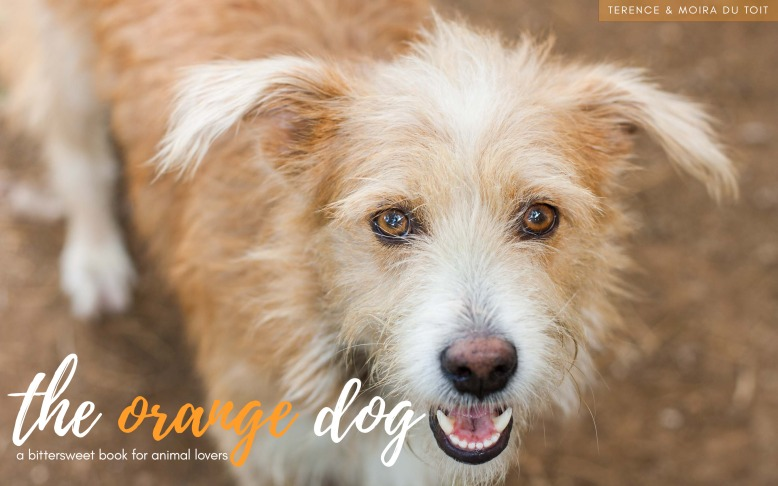 The orange dog available on amazon