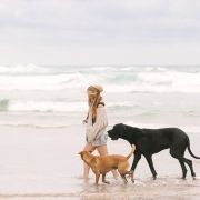 Pet photo shoot Myoli beach Sedgefield with garden route photographer moi du toi photography