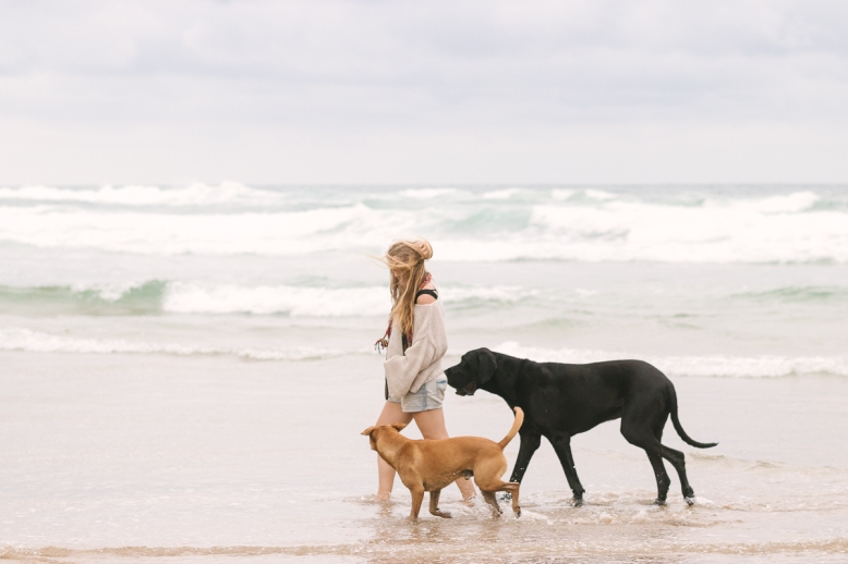 Pet photo shoot Myoli beach Sedgefield with garden route photographer moi du toi photography