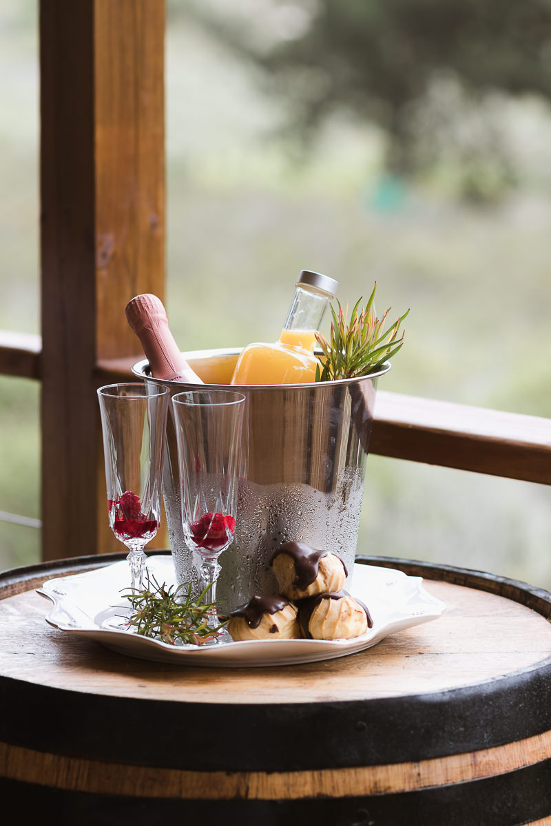 Champagne in ice bucket with snacks real estate bnb photo shoot at Equleni sedgefield garden route photographer moi du to