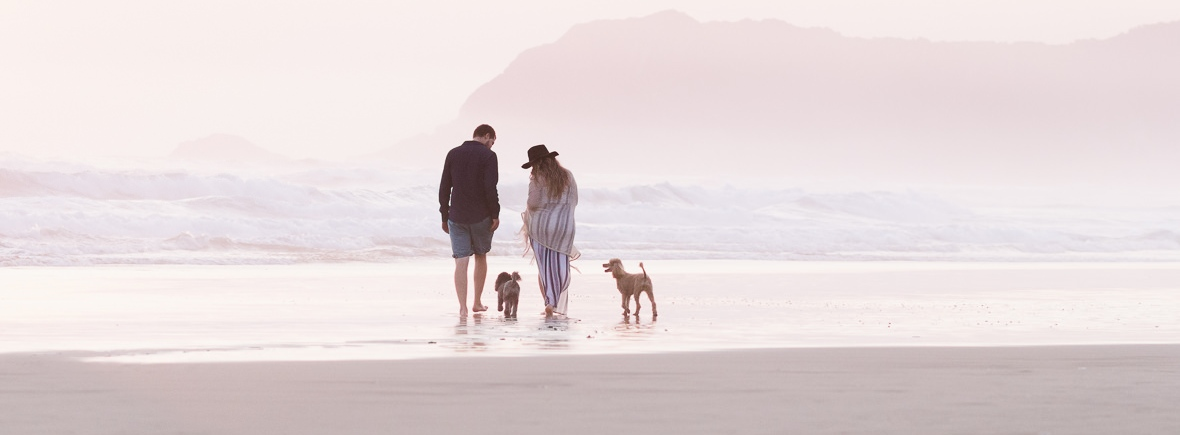 romantic image of couple walking on the beach with dogs at sunset